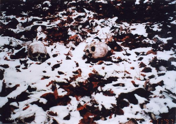 Schädel, nahe Srebrenica, 19.11.1997