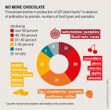 Graphic: Insect Atlas 2020  13b - No more chocolate
