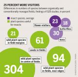 Graphic: Insect Atlas 47b - 25 percent more visitors