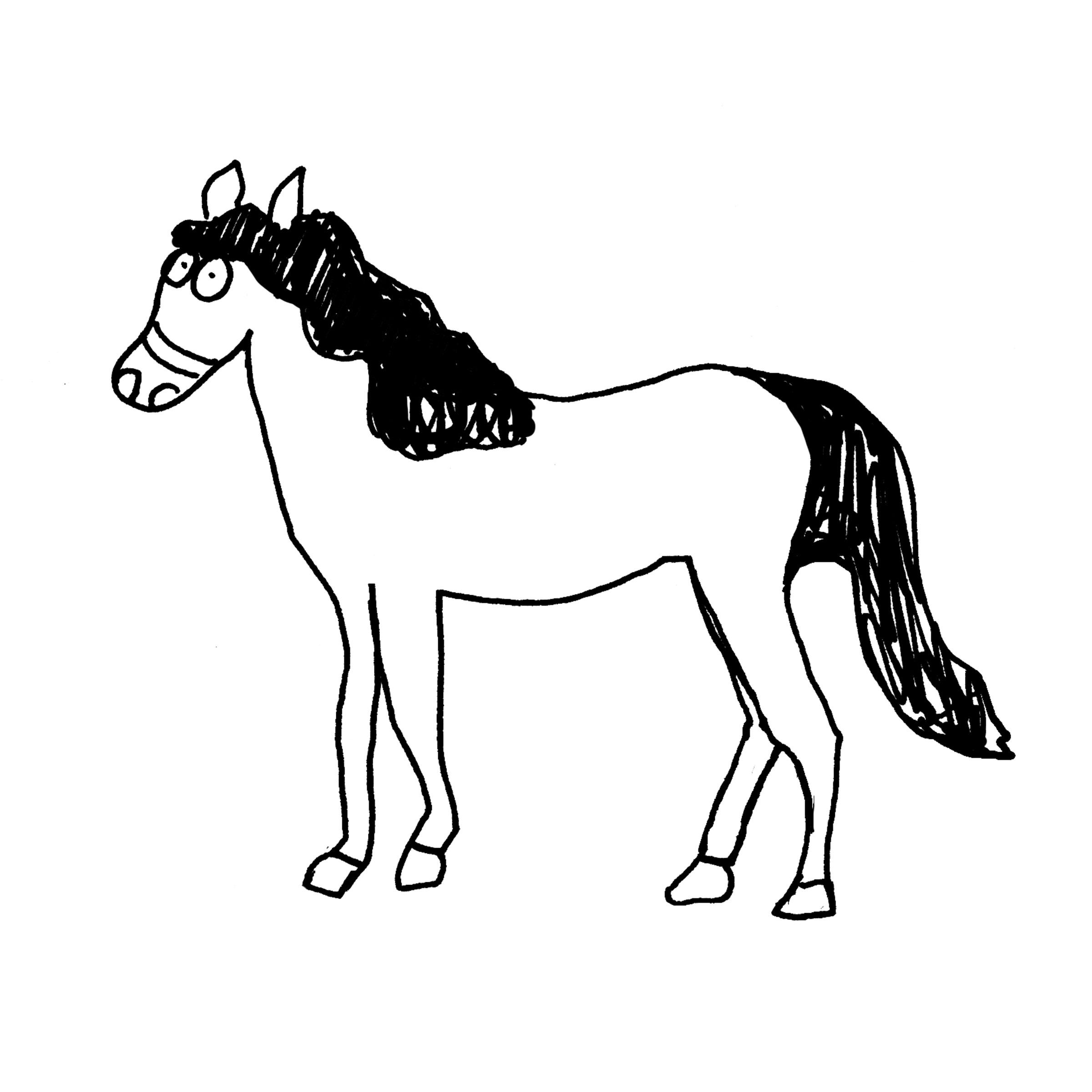 Pferd, © AHOAK